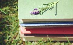 精神内涵的说说句子,生命焕发多姿多彩的绚丽