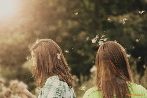 向日葵,一朵对着太阳咧嘴傻笑的花。