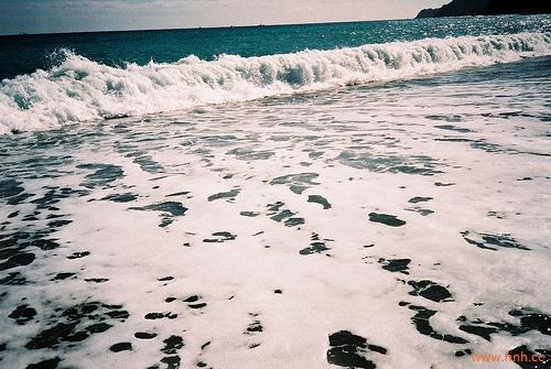你的眼中有一片海却不肯为我蓝