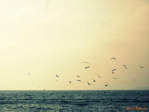 只有一个人生 不要慷慨赠给不爱的人